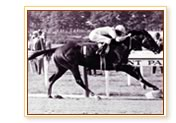 photo of Baeza and Arts & Letters winning the '69 Belmont